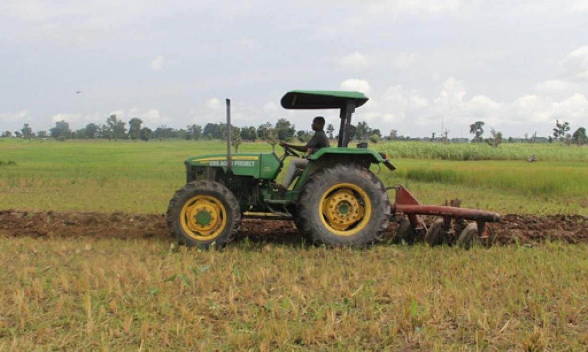 Nigeria's battered farmers to get $20 million to aid crop output