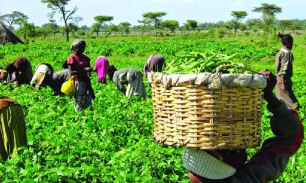 65,000 Nigerian farmers to benefit from N9bn MasterCard intervention